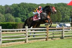 Fair Hill Races 2018-36