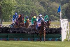 Fair Hill Races 2018-147