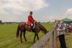 Fair Hill Races 2018-37