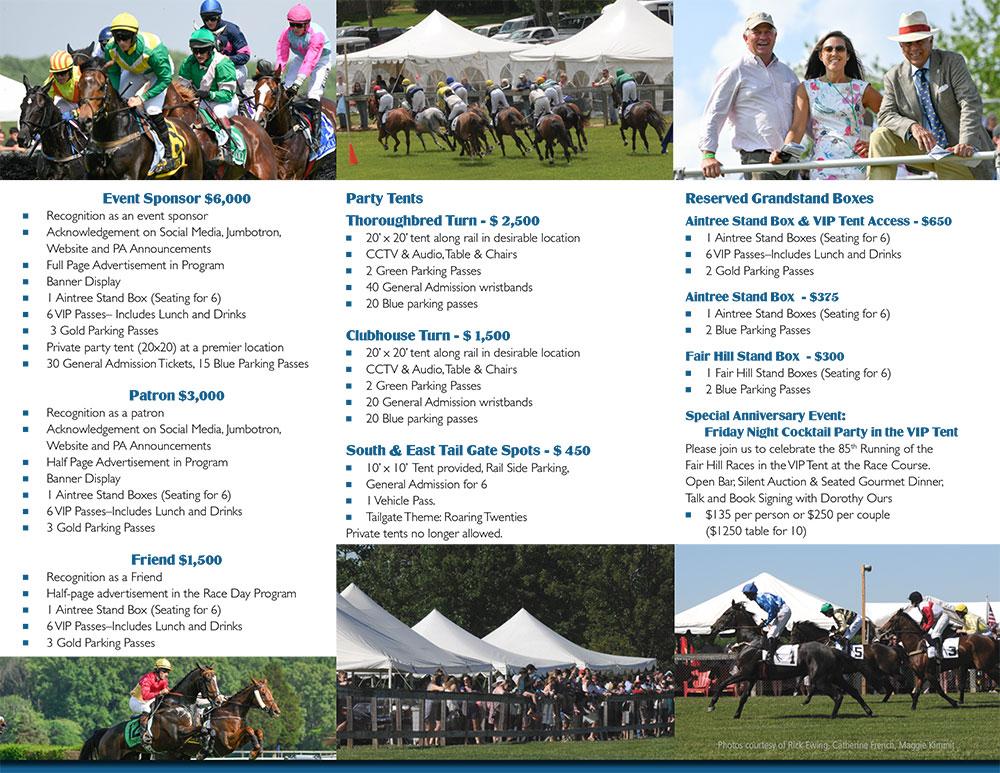 Sponsor Brochure 2019-web-2